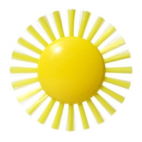 Plui Brush Sunny de moluk